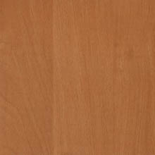Painted Fiberboard 1042 Mountain Alder Dark